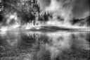 Yellowstone BW